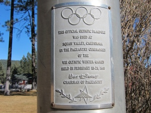 Olympic flag plaque