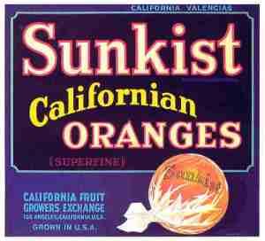sunkist_californian_oranges_ol344